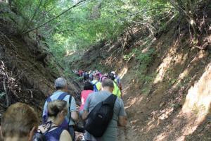 il sentiero verso Bergallo